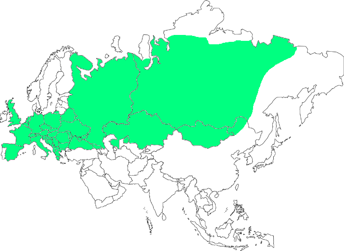diffusione-talpa-europaea